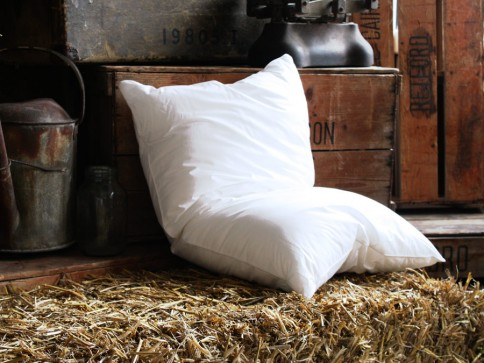 Hollowfibre Pillow