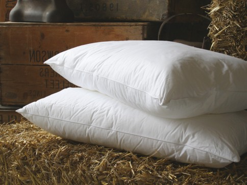 Microfibre Pillow