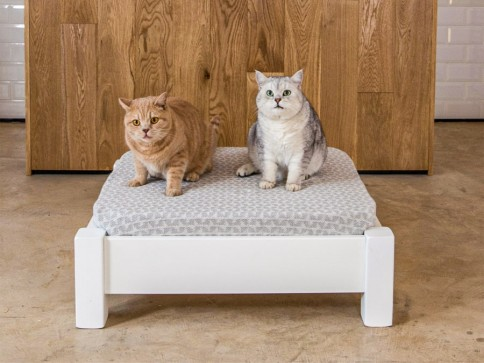 Raised Wooden Pet Bed