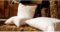 Hungarian Goose Down Pillow