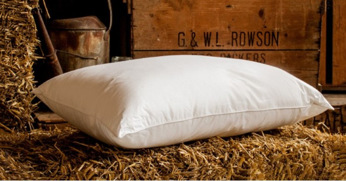 Memory Microfibre Foam Pillow