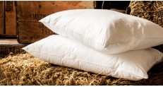 Microfibre Silky Pillow