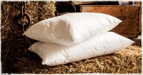 Goose Feather Down Pillows