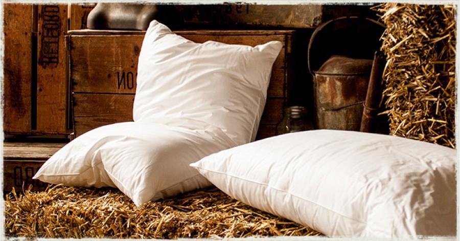Hungarian Goose Down Pillow Get Laid Beds