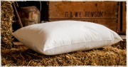 Memory Microfibre Foam Pillow