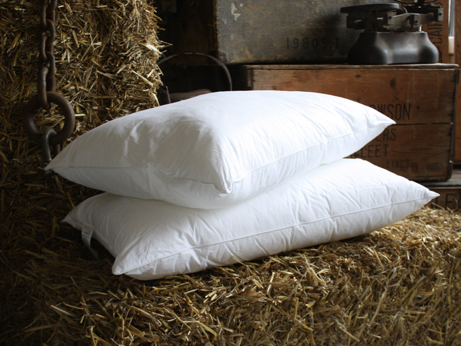 Feather Filled Pillows (Down Pillows)